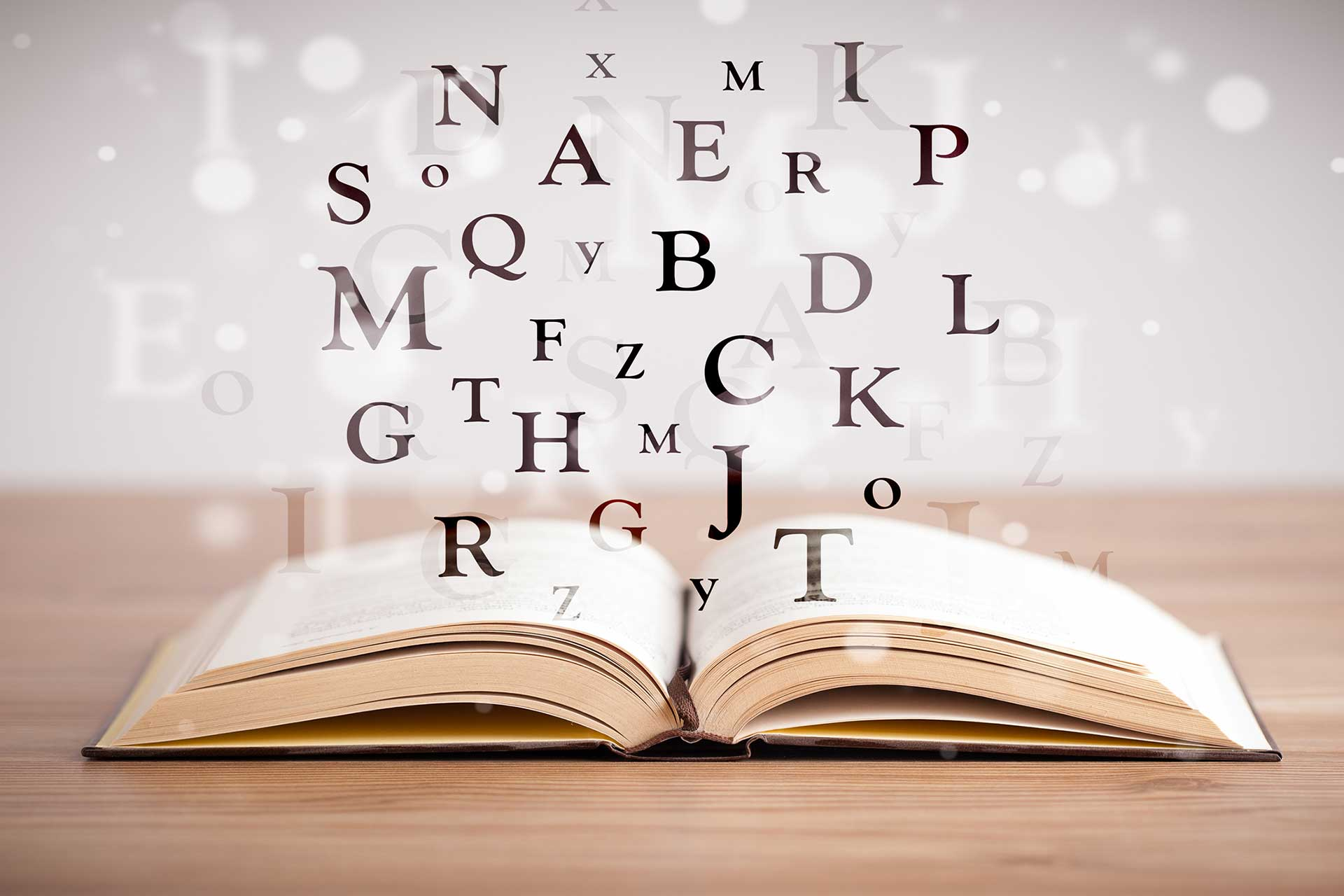 libro - tipografia sady francinetti